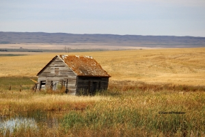 Homestead west of Moose Jaw